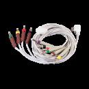 12 CH standard patient cable